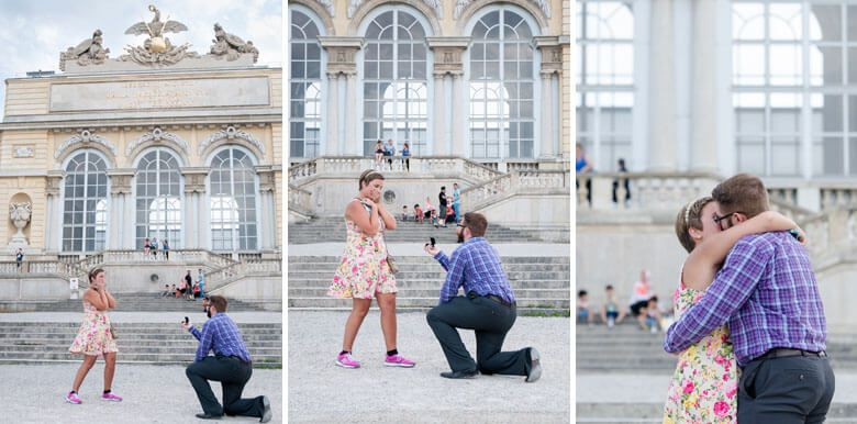 secret proposal in Vienna