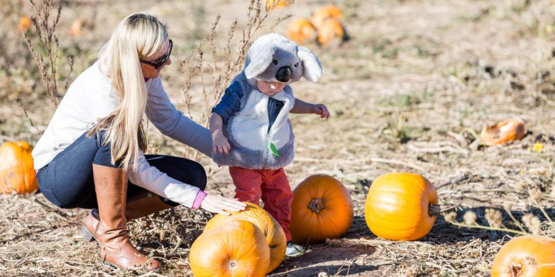 Best Family Photo Ideas in Autumn