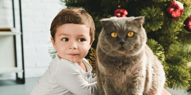Children's Christmas Photo Shoot Ideas